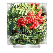 Become Quiet - Rumi Quote Shower Curtain