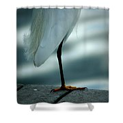 Bed Time Shower Curtain