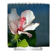 Bee A Flower Shower Curtain