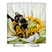Bee All That You Can Bee Shower Curtain