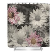Bee And Daisies In Partial Color Shower Curtain
