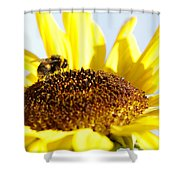 Bee And Flower Shower Curtain by Les Cunliffe