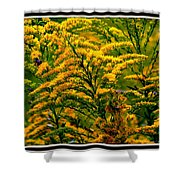 Bee And Goldenrod Shower Curtain