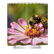 Bee At Work Shower Curtain