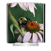 Bee Brunch I Shower Curtain