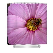 Bee Cosmos Shower Curtain