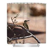 Bee-eater V15 Shower Curtain