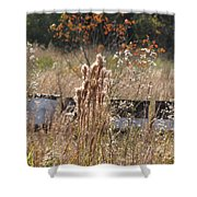 Bee Hives II Shower Curtain