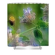 Bee In Catmint Shower Curtain