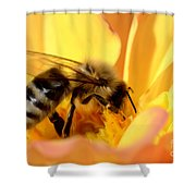 Bee In Flower Shower Curtain