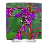 Bee In Hdr Shower Curtain