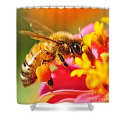 Bee Laden With Pollen 2 By Kaye Menner Shower Curtain