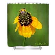 Bee My Coneflower Shower Curtain
