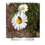 Bee On A Daisy Shower Curtain