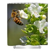 Bee On Basil Shower Curtain