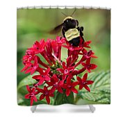 Bee On Flower Cluster Shower Curtain