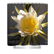 Bee Pollinating Dragon Fruit Blossom Shower Curtain