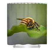 Bee Still Shower Curtain