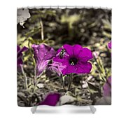 Bee To A Flower Shower Curtain