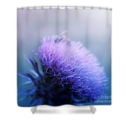 Bee-utiful  Shower Curtain