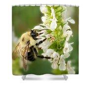 'bee'autiful Morning Shower Curtain