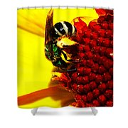 #beegreen Shower Curtain