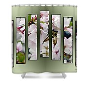 Bees And Blossoms Shower Curtain