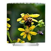 Bees At Work Shower Curtain