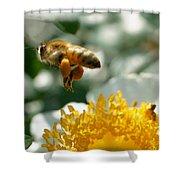 Bee's Feet Shower Curtain