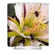 Bees In Blossom Shower Curtain