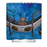 Before And After Sample Art 22 Shower Curtain