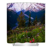 Before Dawn At Mount Rainier Shower Curtain