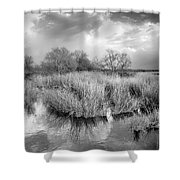 Before The Big Storm Mono Shower Curtain