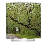 Before The Fall Shower Curtain