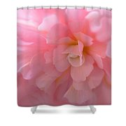 Begonia Flower Passion Pink Shower Curtain