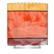 Begonia Petals Triptych Shower Curtain