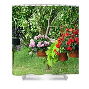 Begonias On Line Shower Curtain