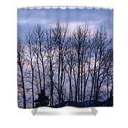 Beguiling Beauty Shower Curtain