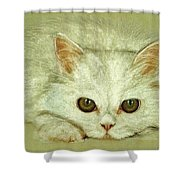 Beguiling Eyes Shower Curtain