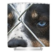 Behind Fences Shower Curtain