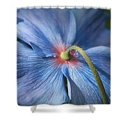 Behind The Blue Poppy Shower Curtain