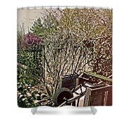 Behind The Garden Shower Curtain by Tom Gari Gallery-Three-Photography