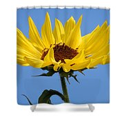 Bright Yellow Happy Sunshine Shower Curtain