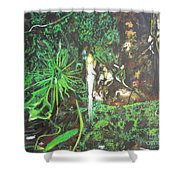 Being Of Light Shower Curtain