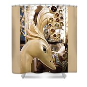 Bejewelled Shower Curtain