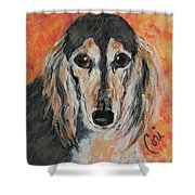 Bella Shower Curtain