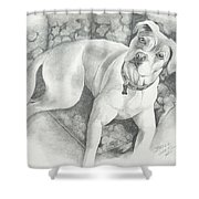 Bella My Pup Shower Curtain by Joette Snyder