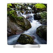 Below Rainier Shower Curtain by Chad Dutson