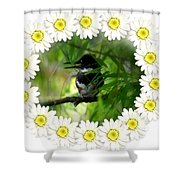 Belted Kingfisher In The Midst Shower Curtain