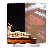 Ben Franklin Glass Harmonica Shower Curtain